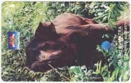INDONESIA A-394 Magnetic Telekom - Animal, Elephant - Used - Indonesien