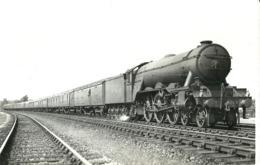 "5661 "" STEAM LOCOMOTIVE A3 PACIFICS N°2504""ORIGINALE - Trains"