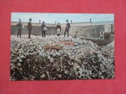 Bone Yard  Habana    Cuba >  Ref 3682 - Cuba