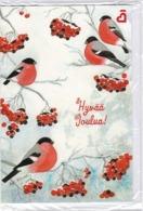 Postal Stationery - Birds - Bullfinches In Winter Landscape - Finnish Heart Association - Suomi Finland - Postage Paid - Finlandia