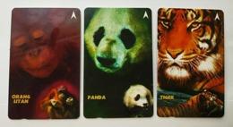 Singapore Old Phonecards Singtel Orang Utan Panda Tiger Used Ape Bear . 3 Cards - Dschungel