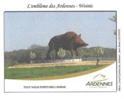 SAULCES MONCLIN 08 ARDENNES - LE SANGLIER DE WOINIC, PHOTOGRAPHIE DE JEAN MARIE LECOMTE, PAP ENTIER POSTAL 2010 - A VOIR - Briefmarken