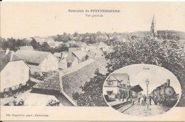 Souvenir De PFETTERHOUSE Vue Générale Et Gare - Sonstige Gemeinden