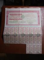 Actions - Tunisie - Gouvernement Tunisien - Emprunt 3% 1902/1907 - 6 Octobre 1949 - Action Au Porteur - Obligation - Africa