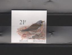 BUZIN / TIMBRE NON DENTELE - NUMEROTE AU VERSO / COB 2792 - 1985-.. Oiseaux (Buzin)