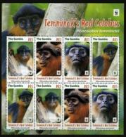 Gambia 2016  Wwf Monkeys Klb 8v MNH - Neufs