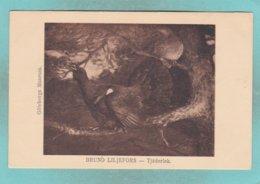 "Small Post Card Of Swedish Artist,Bruno Liljefors,""Tjäderlek"" (Capercaillies Singing),Sweden,N81. - Sweden"
