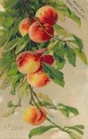 CPA-10018  -Illustrateurs - Motif Fruits Par  Catharina Klein -Envoi Gratuit - Klein, Catharina