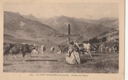 LE PETIT BORNAND - Plateau De Cenyse - France