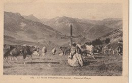 LE PETIT BORNAND - Plateau De Cenyse - Frankrijk
