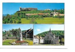 25 Le Chateau De BELVOIR Cpm Basilique Et Statue De Sainte Jeanne Antide - Francia