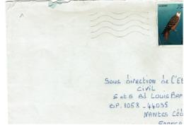 ALGERIE - Faucon Seul Sur Lettre - Aquile & Rapaci Diurni