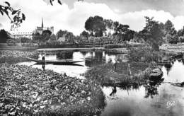 AMIENS  Les Hortillonnages  2  (scan Recto Verso)MG2882TER - Amiens