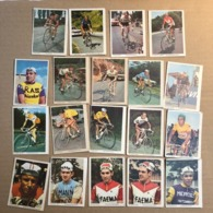 19 Chromos / Cards Monty -  Cyclists - Cyclisme - Ciclismo - Wielrennen