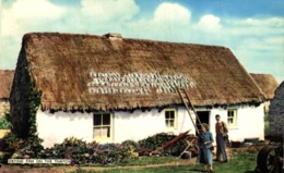 DRYING FISH ON THE THATCH - Pesca