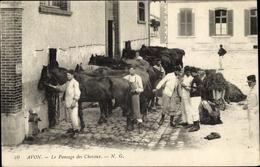 Cp Avon Seine Et Marne, Le Pansage Des Chevaux, Soldats - France