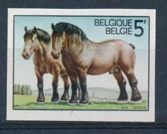 BELGIE - OBP Nr 1810 - ONGETAND/NON-DENTELE - Ardens Trekpaard/Cheval De Trait Ardennais - MNH**  - Cote 11,00 € - Belgium