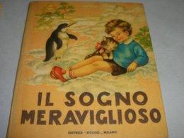 """LIBRO ILLUSTRATO DA MARIAPIA EDITRICE PICCOLI """"IL SOGNO MERAVIGLIOSO"""" COLLANA GIOIE N.4 - Boeken, Tijdschriften, Stripverhalen"""