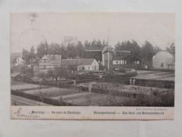 Scherpenheuvel, Een Hoek Van Scherpenheuvel 1903 - Scherpenheuvel-Zichem