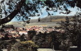 Neufchatel En Bray (76) - Vue Générale - Francia