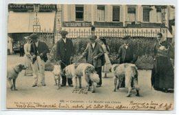 """65 CAUTERETS Le Marché Aux Chiens Place Commerce """" Photographie MESSY """"  1904 Timb    D15 2019 - Cauterets"""
