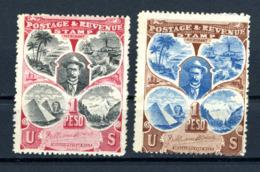 USA  Cinderella   Postage And Revenue Stamp - Andere