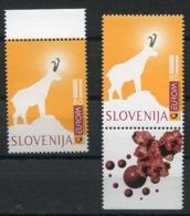 RC 14249 EUROPA 1997 SLOVENIE NEUF ** MNH - 1997