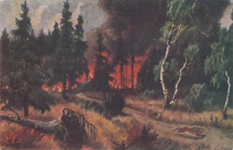 WALDBRAND - Karte Gel.1919, Sondermarke Ceskos… - Künstlerkarten