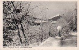PAYSAGE D HIVER.WINTERLANDSCHAFT - NE Neuchâtel