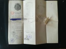 TITULAIRE DE GRAMMONT GERAARDSBERGEN FLANDRE BELGIQUE DOCUMENT FAISANT OFFICE DE PASSEPORT VISA FRANCE 1920 - Historische Documenten
