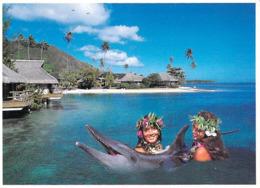 Polynésie Française -Dolphin Quest Au Beachomber Parkroyal MOOREA (DAUPHIN Vahinés Sourire) @ (T.Sylvain Tahiti 711 - Polynésie Française