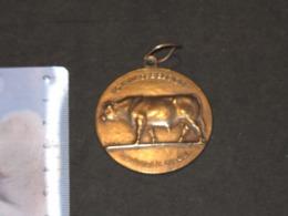 MINISTERE DE L'AGRICULTURE 1959 - Médaille Signée RAYMOND DE MEESTER - Altri
