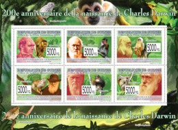 Guinea 2009 MNH - 200th Anniversary Of Charles Darwin (Monkeys) III. YT 4155-4160, Mi 6581-6586 - Guinée (1958-...)