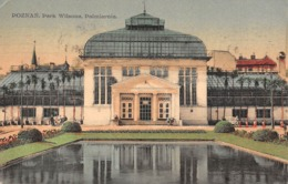 CPA - Pologne - Poland, POZNAN, Park Wilsona, Palmiarnia, 1931 - Polen