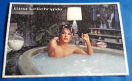 GINA LOLLOBRIGIDA # Italian Actress :: Sexy Pin-Up Portrait (halb-nackt/nude/nu) # Modern Photo-PostCard # [19-2934] - Attori