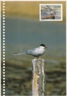 ÅLAND 2000 Seabirds/Vitfåglar: Postcard MINT/UNUSED - Aland