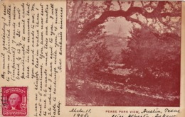 38/ Fotokaart, Pease Park View - Austin