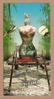 CC Carte Parfumée 'JEAN PAUL GAULTIER' #8 'SUMMER' JPG Perfume Card - Cartes Parfumées