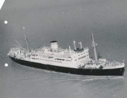 Grande Argentique Cargo égyptien En Haute-mer Suez Boat Egyptian Sea Marine - Barche