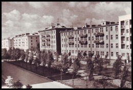 BELARUS, GOMEL (USSR, 1965). DWELLING HOUSES ON POBEDY STREET. Unused Real Photo Postcard - Belarus