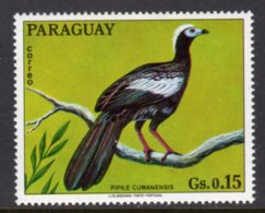 PARAGUAY - 1973 15c WILDLIFE BIRD STAMP FINE MNH ** Mi 2489 - Paraguay