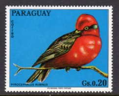 PARAGUAY - 1973 20c WILDLIFE BIRD STAMP FINE MNH ** Mi 2490 - Paraguay