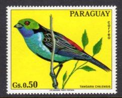 PARAGUAY - 1973 50c WILDLIFE BIRD STAMP FINE MNH ** Mi 2493 - Paraguay