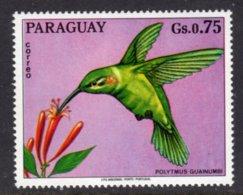PARAGUAY - 1973 75c WILDLIFE BIRD STAMP FINE MNH ** Mi 2494 - Paraguay