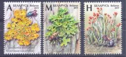 2019. Belarus, Flora Of Belarus, Lichens, 3v, Mint/** - Bielorussia