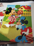 WALT Disney Topolino E Minnie  V1984   HF1208 - Disney
