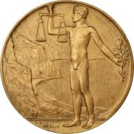 Allemagne, Médaille, Gevaert Wettbewerb, Berlin, 1912, C.Stoeving, SUP+, Bronze - Deutschland