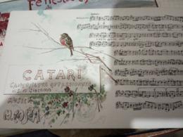 NAPOLI MUSICALE CATARI Musica  M COSTA  ILLUSTRATA SCOPETTA Cartolina Musicale BIDIERI N1910  HF1212 PERFETTA - Musica E Musicisti