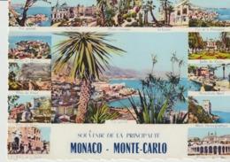 C. P. - PHOTO - SOUVENIR DE LA PRINCIPAUTÉ - MONACO - MONTE CARLO - MULTIVUES - 14 VUES - A. D. I. A. - Palais Princier