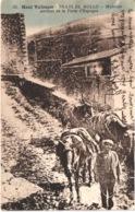 FR66 PRATS DE MOLLO - Badouix 25 - Colorisée - Muletier Sortant De La Porte D'Espagne - Animée - Belle - Autres Communes